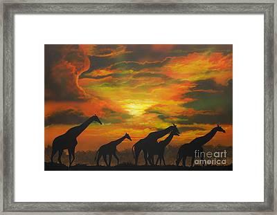 Wild Framed Print by Mark Henry