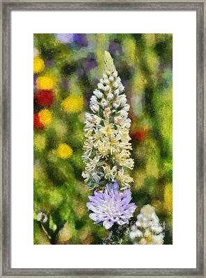 Wild Mignonette Framed Print by George Atsametakis