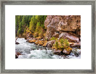Wild Mountain River Framed Print by Pati Photography