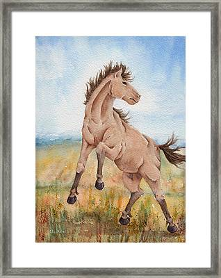 Framed Print featuring the painting Wild Mustang With Attitude by Rebecca Davis