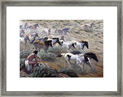 Wild Mustangs Framed Print by Gregory Perillo