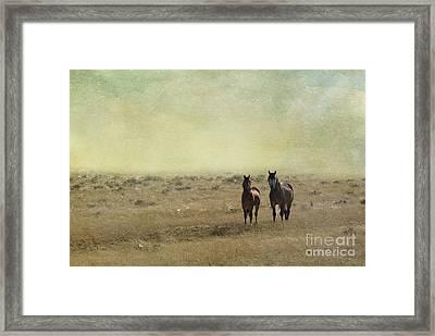 Wild Pair Framed Print