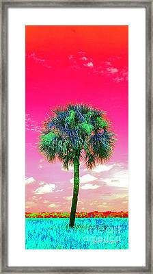 Wild Palm 2 Framed Print