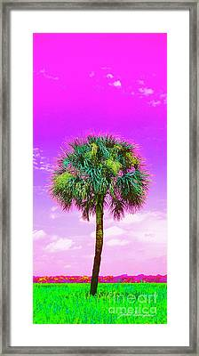Wild Palm 4 Framed Print