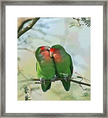 Wild Peach Face Love Bird Whispers Framed Print