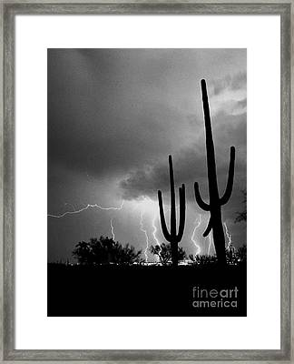 Framed Print featuring the photograph Wild Places by J L Woody Wooden