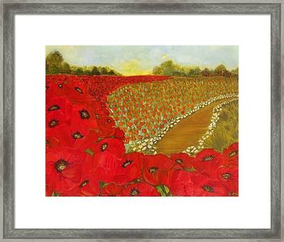 Wild Red Poppies Framed Print