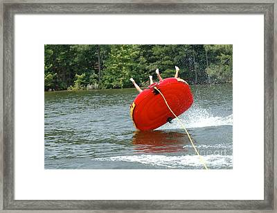 Wild Ride Framed Print by M West