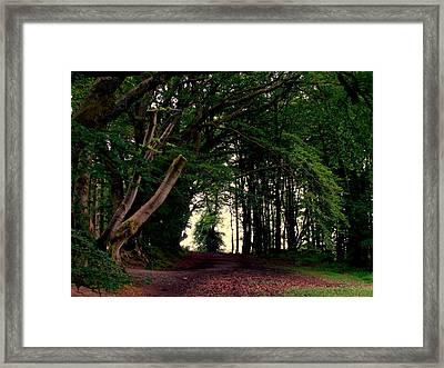 Wild Side Framed Print