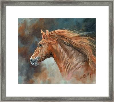 Wild Stallion Framed Print