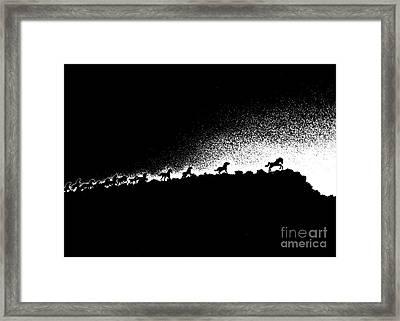 Wild Stallions Silhouette Framed Print