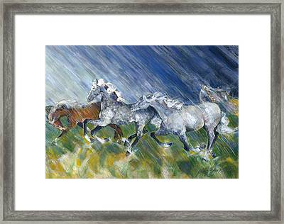 Wild Storm Framed Print by Mary Armstrong