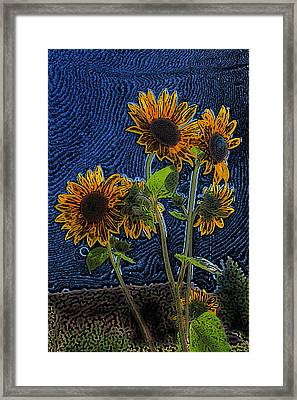 Wild Sunflowers Pencil Drawing Framed Print by Scott Campbell