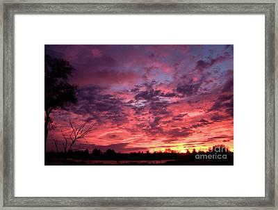 Wild Sunset Framed Print