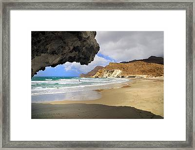 Wild Swim Framed Print