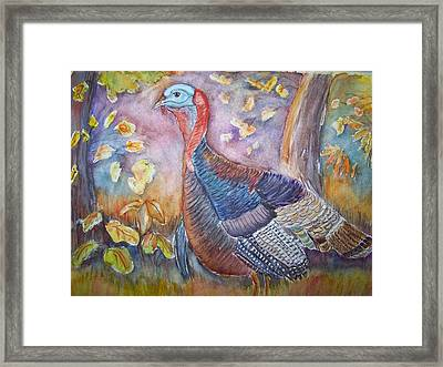Wild Turkey In The Brush Framed Print
