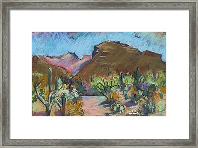 Framed Print featuring the painting Wild Tuscon by Linda Novick