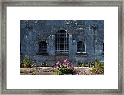Wild Valerian Near Prison Walls In Fort Framed Print