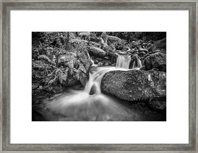 Wild Water Framed Print by Guido Montanes Castillo