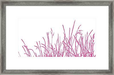 Wild Whisper Framed Print by Sarah Hough