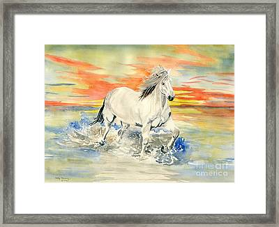 Wild White Horse Framed Print by Melly Terpening