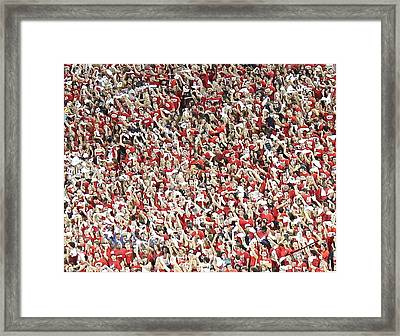 Wildcats Framed Print by Kume Bryant