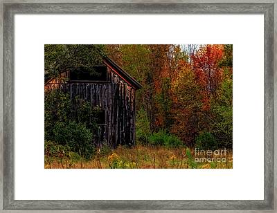 Wilderness Barn Framed Print by Brenda Giasson