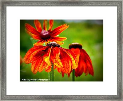 Wildest Bloom Framed Print