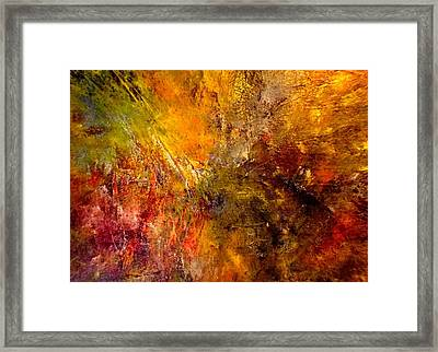 Wildest Stallions Framed Print by Paula Andrea Pyle