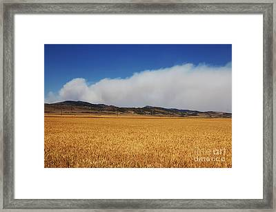 Wildfire Framed Print by Jon Burch Photography