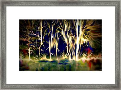 Wildfire Framed Print by Karunita Kapoor