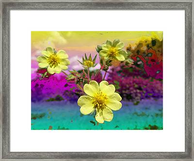 Wildflower Abstract Framed Print