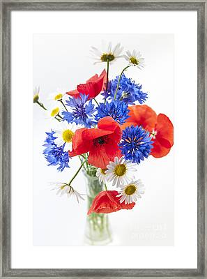 Wildflower Bouquet Framed Print by Elena Elisseeva