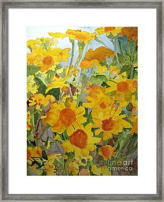 Wildflower Volunteers Framed Print