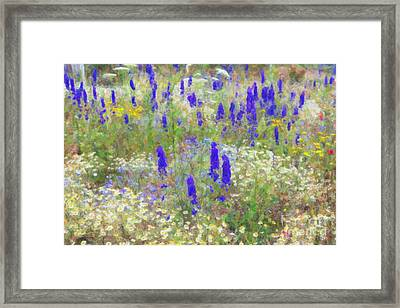 Wildflower Watercolour Framed Print by Tim Gainey