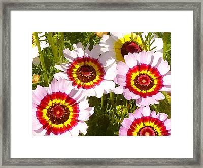Wildflowerd Wide 1 Framed Print by Amy Vangsgard