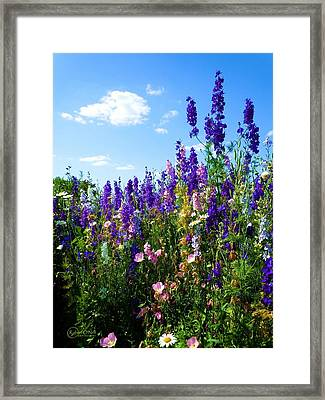Wildflowers #9 Framed Print