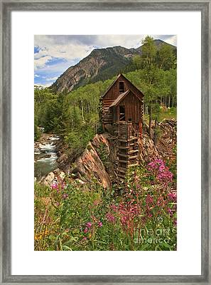 Wildflowers Along The Crystal Framed Print by Adam Jewell