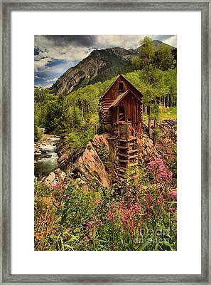 Wildflowers And Clouds Framed Print by Adam Jewell