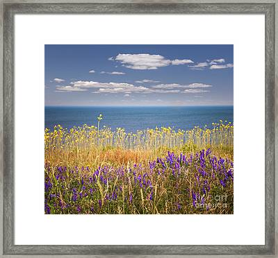 Wildflowers And Ocean Framed Print