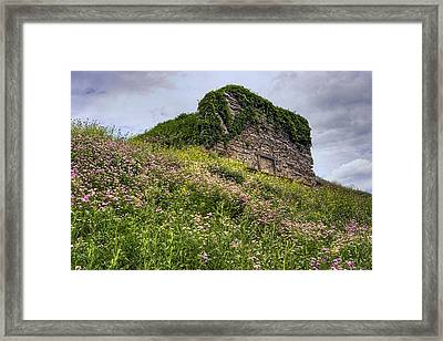 Wildflowers And Vines Surround The Loyalsock Stonework Lime Kiln Framed Print