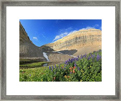 Wildflowers At Emerald Lake. Framed Print