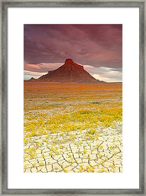 Wildflowers At Factory Butte. Framed Print