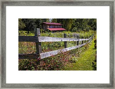 Wildflowers At The Fence Framed Print