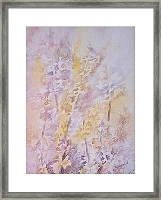 Wildflowers Framed Print by Carolyn Rosenberger