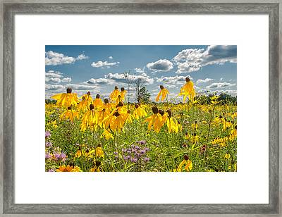 Wildflowers Dance Framed Print