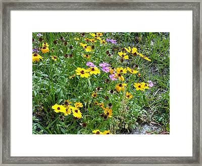 Wildflowers Framed Print by Kay Gilley