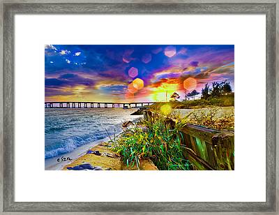 Wildflowers Landscape - Golden Rod Flowers Sunset Framed Print