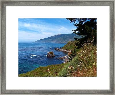 Wildflowers On The Coast Framed Print
