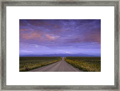 Wildflowers On The Plains Framed Print